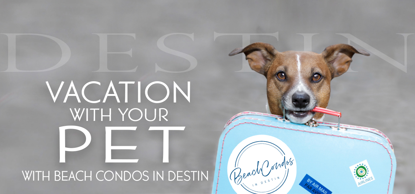 Vacation with your pet with Beach Condos in Destin